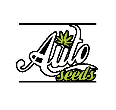 Auto Seeds | Chosen Seeds UK | Weed Seeds Delivered UK | Weed Seeds Delivered To USA