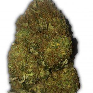 Skunky Monkey Auto Cannabis Seeds