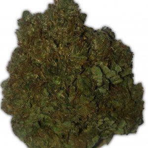 Money Bush Cannabis Seeds