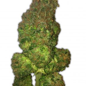Fruit Punch Cannabis Seeds
