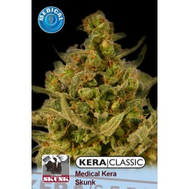 Medical Skunk Cannabis Seeds