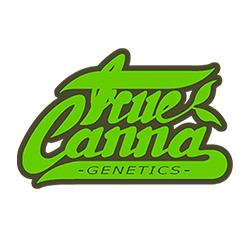 True Canna